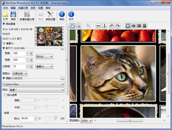 PhotoZoom Pro(图片放大) V6.1.0 简体中文版