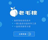 老毛桃一键重装萝卜花园旗舰版系统软件正式版2.59