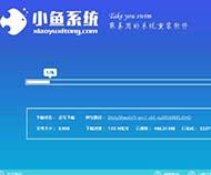 小鱼一键重装易捷专业版系统大师通用版6.3.9